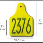 Crotal macho cuadrado grande ref. 621 de plástico con punta metálica de acero. Diferentes colores: amarillo, azul, verde, rojo, blanco. Grabación con láser inalterable.